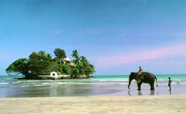 SRI LANKA – A JOURNEY FOR LIFE! Check out our client case.